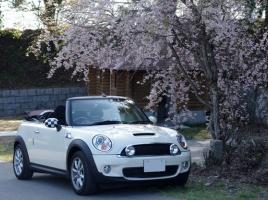 一番高く車を売るのに、最適な時期はいつなの?
